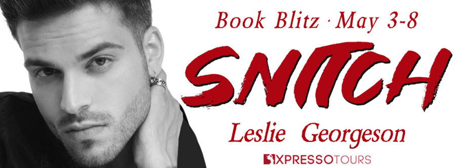 Welcome to the book blitz for SNITCH, the second book in the adult romantic suspense series, Something Real, by Leslie Georgeson