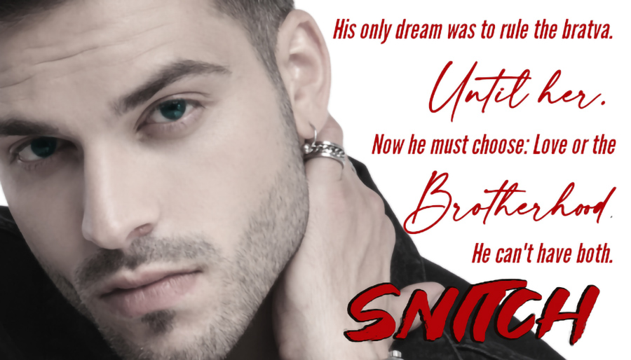 Teaser from SNITCH, the second book in the adult romantic suspense series, Something Real, by Leslie Georgeson