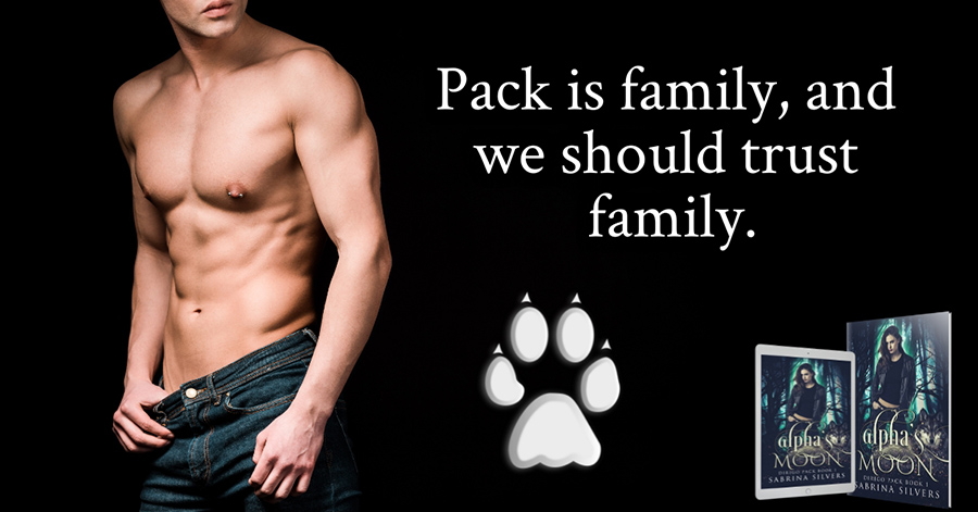 Teaser from ALPHA'S MOON, the first book in the adult paranormal romance series, Dirigo Pack, by Sabrina Silvers