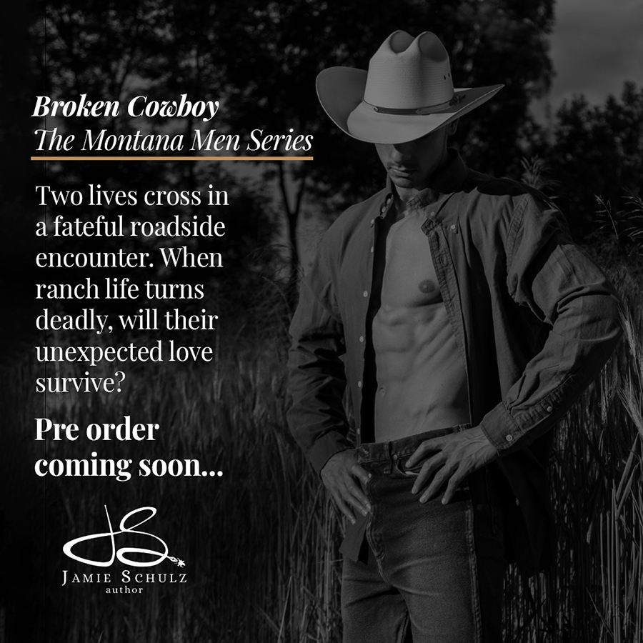 Teaser from BROKEN COWBOY, the first book in the adult western romance series, The Montana Men, by Jamie Schulz