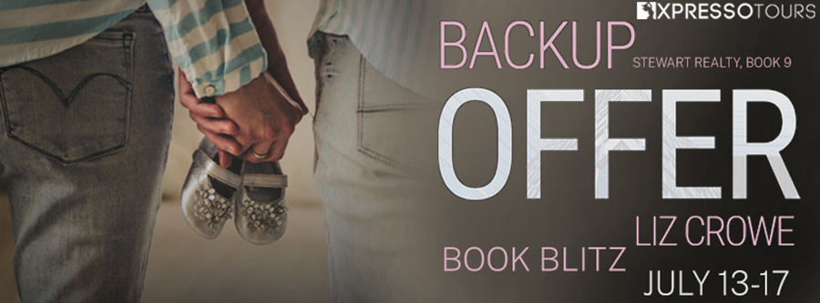 Welcome to the book blitz for BACKUP OFFER, the ninth book in the adult contemporary romance series, Stewart Realty, by Liz Crowe