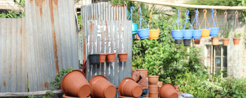How to Prepare Your Container Garden for Winter