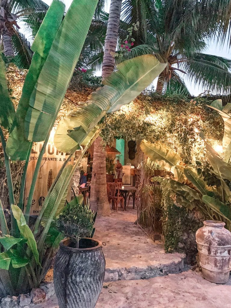 Luuma Restaurant in Holbox