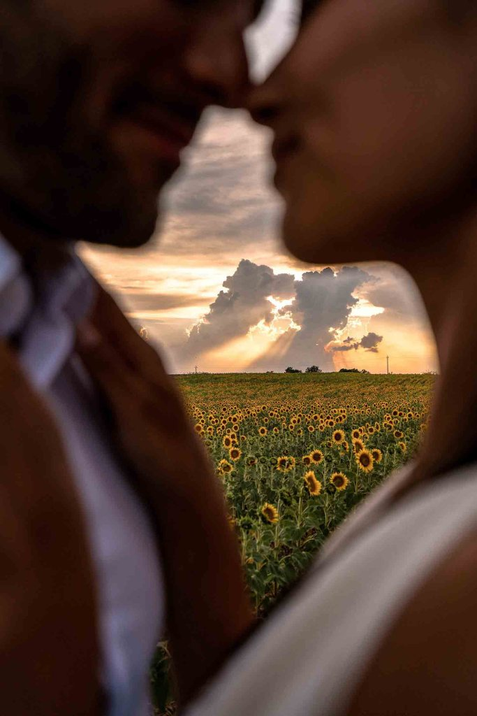 Valensole - Champs de Tournesols - Photo couple