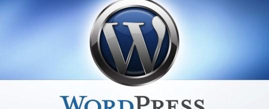 Cara Custom Wp-admin WordPress Agar Terlihat Benar-benar Berbeda