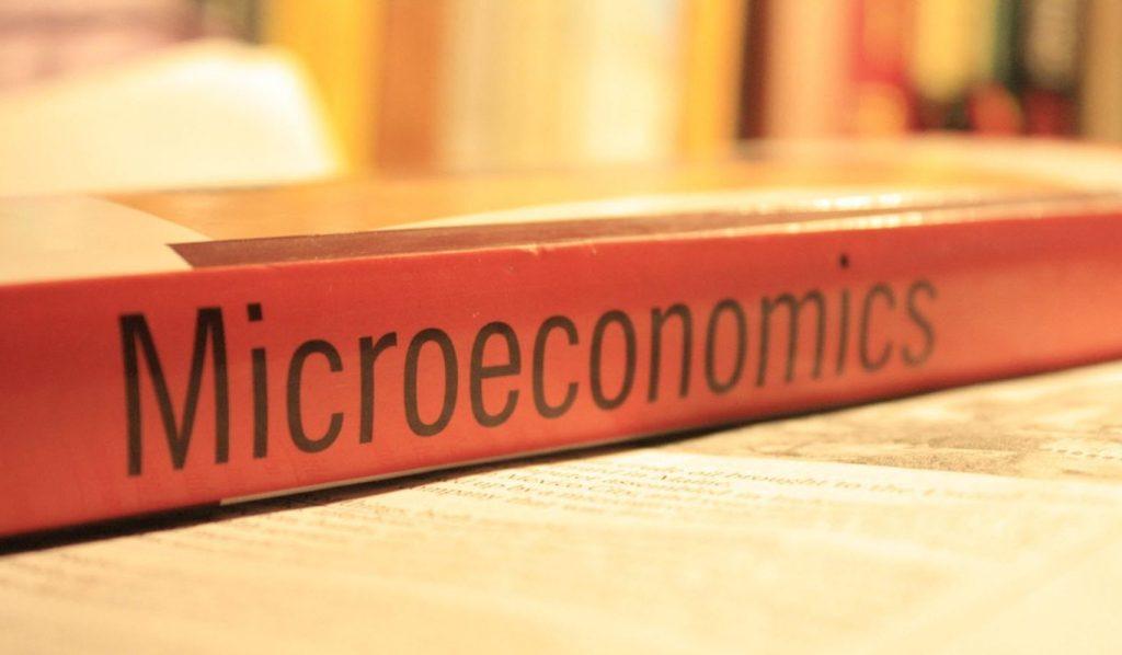 ekonomi mikro dan cakupannya