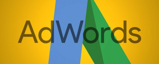 Jasa Pengelolaan Google Adwords Thidiweb Untuk Search Engine Marketing