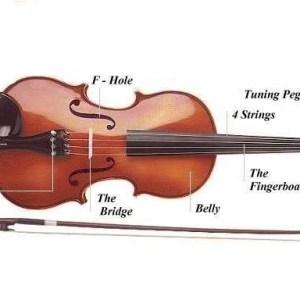 Mẹo bảo dưỡng đàn violon.