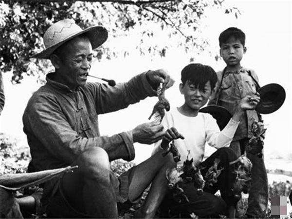 Chiến dịch diệt chim sẻ ở Trung Quốc - Câu chuyện Nhân quả có thật