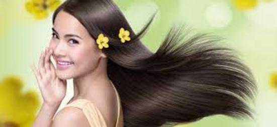 Dầu oải hương có thể thúc đẩy tăng trưởng, mọc tóc và điều trị những vấn đề về tóc như rụng tóc, hói tóc, gàu…