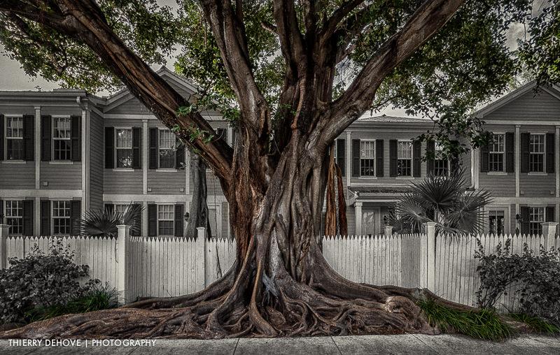 Key West Florida photos