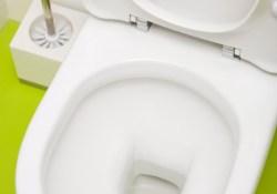 5 Cách vệ sinh bồn cầu hiệu quả nhất