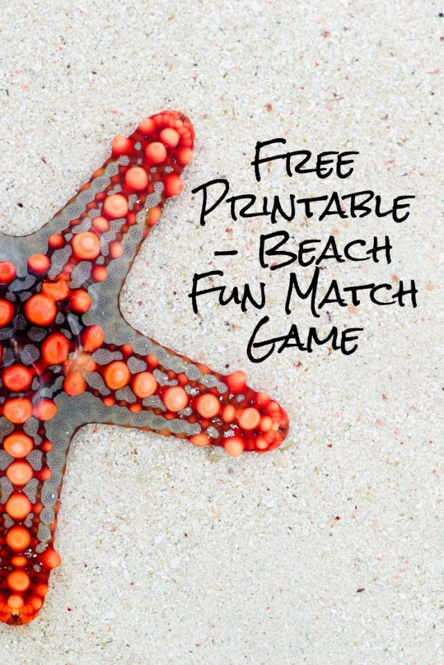 Happy Summer Everyone! Here is a fun Match Game for your kids to play this summer. Even a cute game for them to play on weekends.