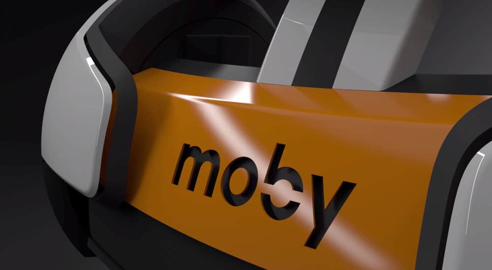 Moby up close shot
