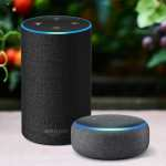 Amazon Alexa and NHS partnership launch