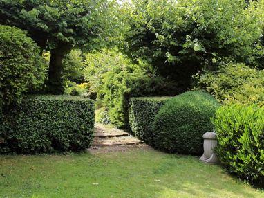 A_path_through_shrub_hedge_Gibberd_Garden_Essex_England