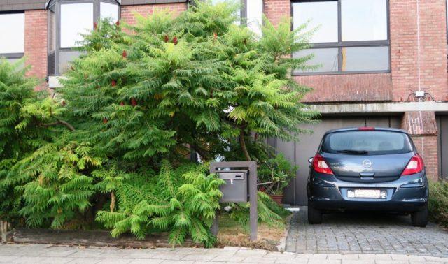 Voortuin met ontharde parkeerplaats
