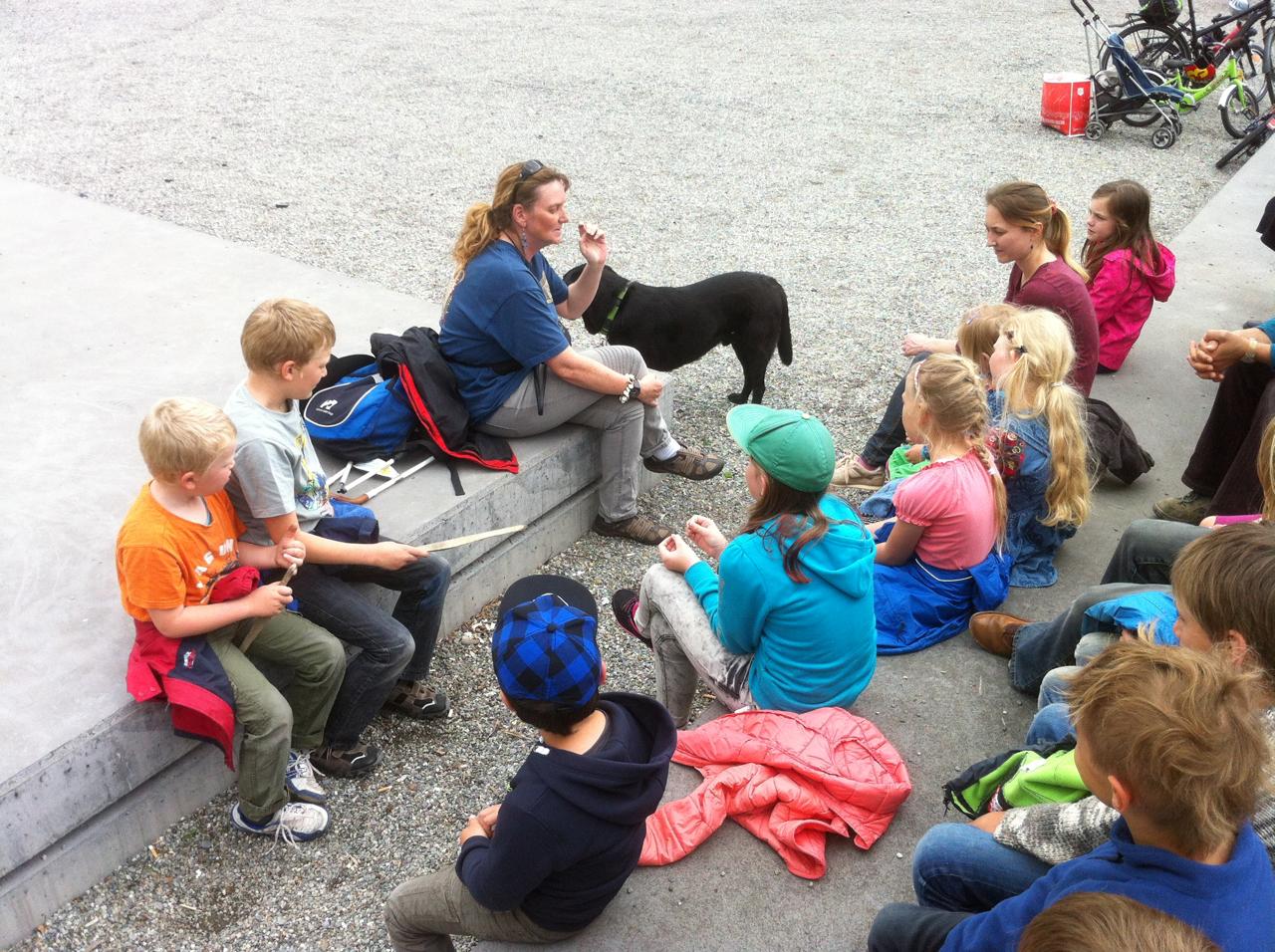 Blindenfuhrhund Seeing Eye Dog Homeschooling In Der