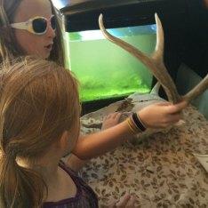 antelope-island--museum-fun
