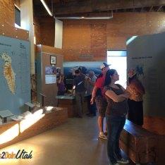 antelope-island-museum