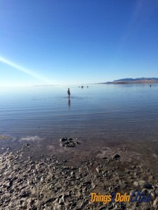 Swimming in Great Salt Lake