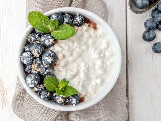 Greek Yogurt Protein
