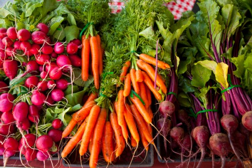 Fresh Vegetables Farm