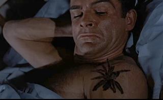 bond-spider (1)