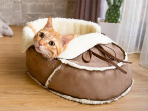 Sherpa Moccasin Cat Bed