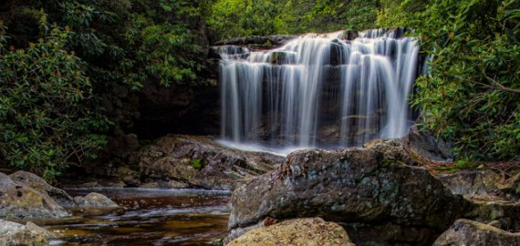 West Virginia Monongahel National Forest