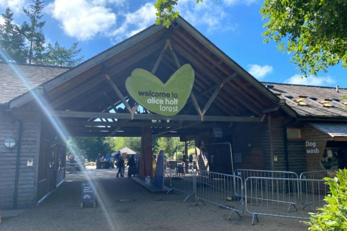 There's a very fine, waterside outdoor seating area with. Alice Holt Country Park Things To Do In Hampshire With Kids