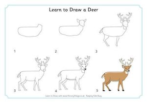 deer draw easy drawings learn drawing step animal animals activityvillage way easiest doodle things village log activity dessin 3d explore