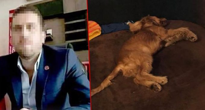 Volkan Uzun killed The Dog By Raping It 4 Am !