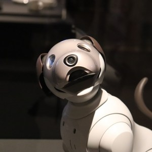 Ford Fetched Robot Dogs To Work In A Factory