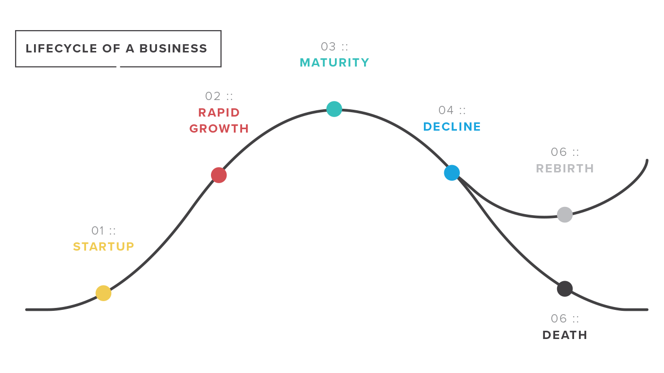 Where Are You In Your Business Lifecycle
