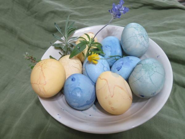 植物染復活節彩蛋(圖:王貞文)