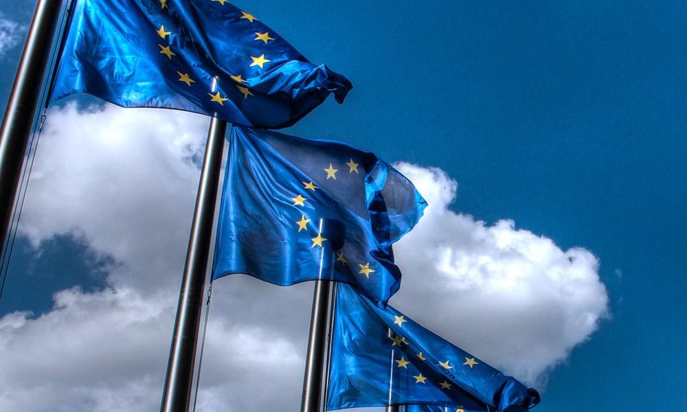 Thijs ter Har EU Flags fundamental rights
