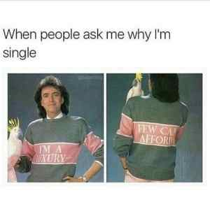 funny meme with parrot and singleness