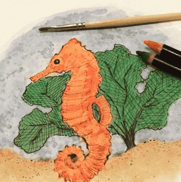 watercolor - Draw 50 Sea Creatures