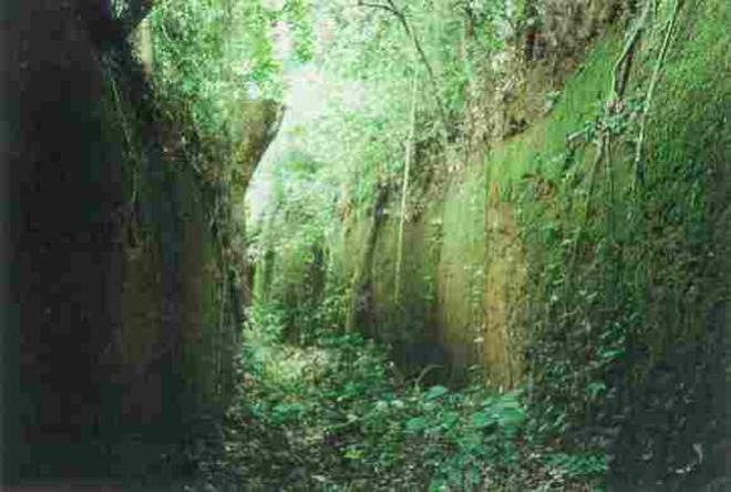 benin - moat and rampart