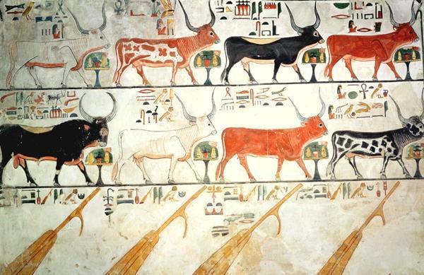 kahun papyrus - pic3 - vet painting