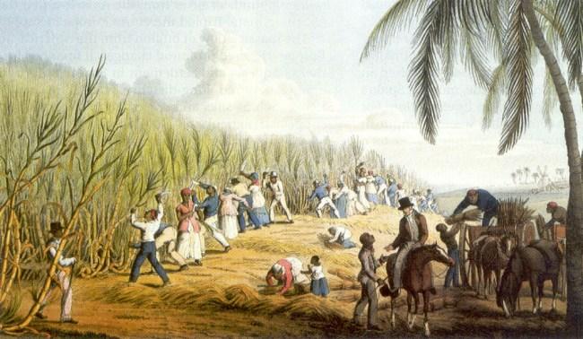 atlantic slave trade plantation artwork