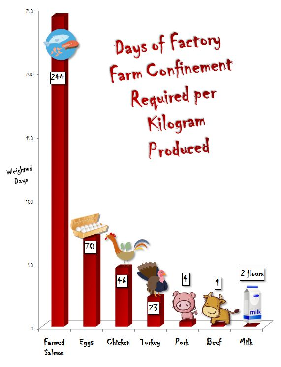 Graph of Suffering Caused by Various Animal Foods