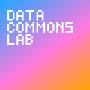 Data Commons Lab. Logo