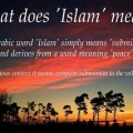 Examining Islam: is it a reasonable faith to trust?