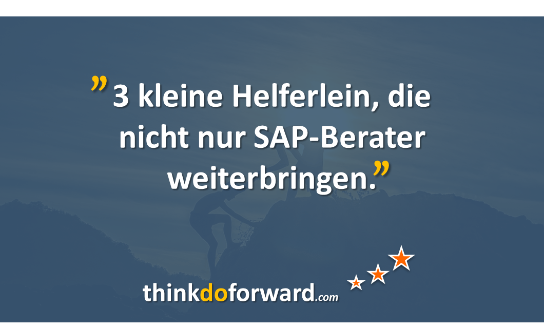 helferlein_sap_berater_2
