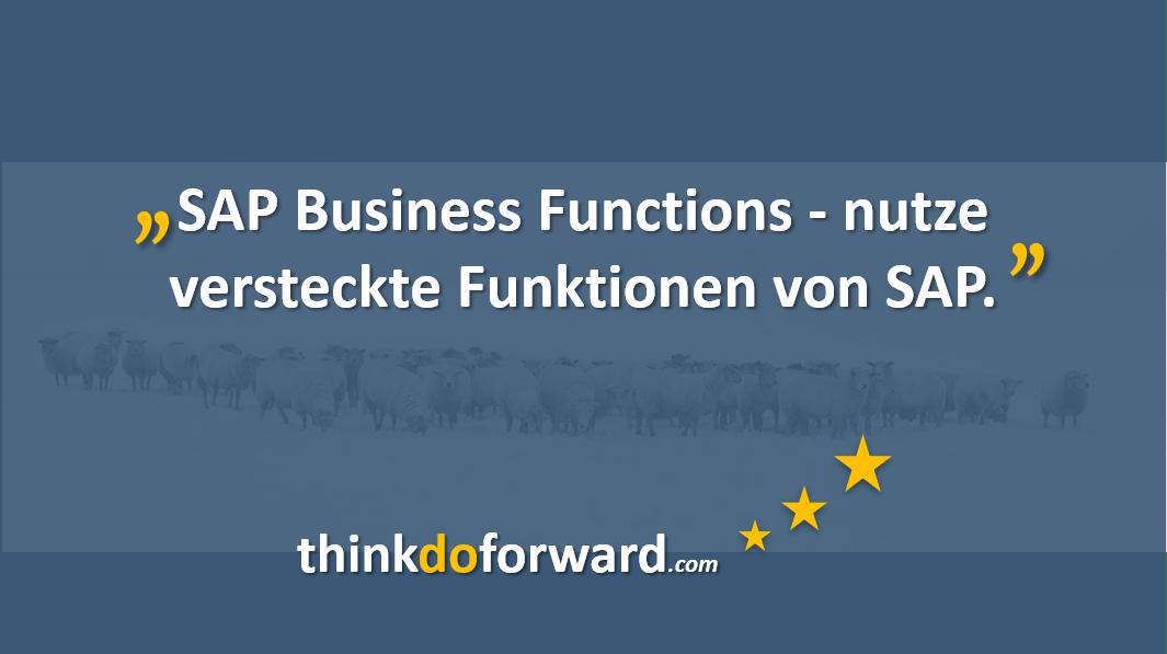 17_sap_business_funktionen
