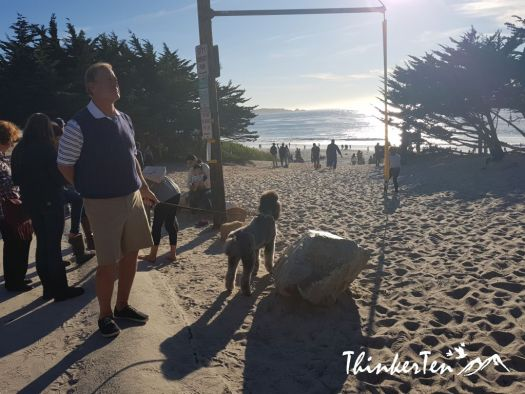 Carmel-By-The-Sea After 17 Miles Drive - Monterey California