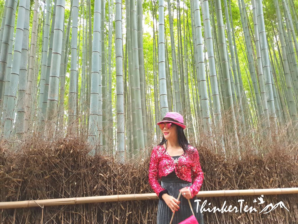 "The Overrrated Arashimaya Bamboo Forest - ""Crouching Tiger Hidden Dragon"" Scene"