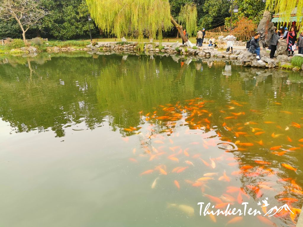 Viewing Fish in Flower Harbor in West Lake Hangzhou